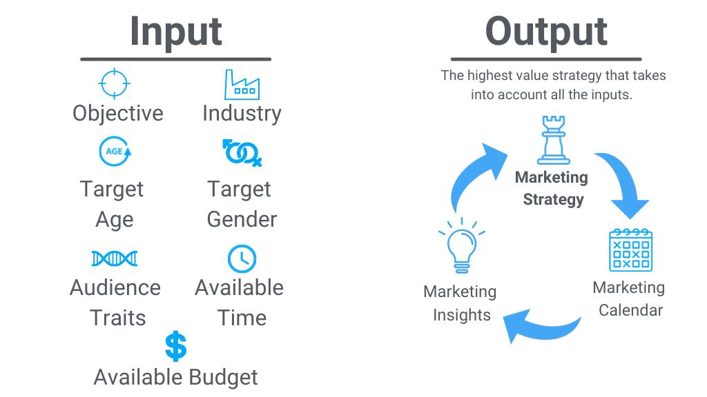 Tactycs marketing strategy tool input